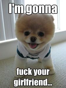 cute dog snapchat